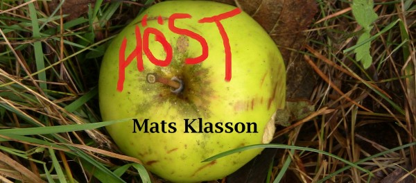 Höst på Kafé K_Mats Klasson