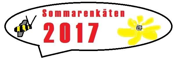 Sommarenkäten2017