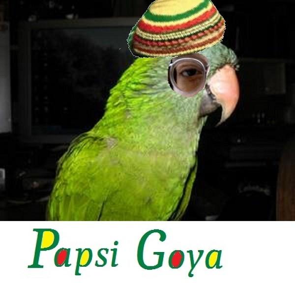 Porträtt_Papsi Goya_600